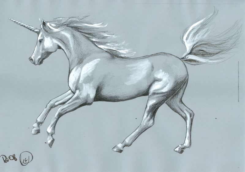 are unicorns a myth or reality A unicorn is a privately held startup company valued at over $1 billion  many unicorns were created through buyouts from large public companies.