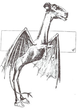 Actual eye witness compilation drawing of the Jersey Devil from 1909.
